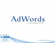 AdWords Management Presentation (2013) - Free Google AdWords Account Evaluation